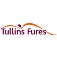 Ville Tullins